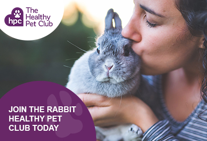 Join The Healthy Pet Club rabbits club today